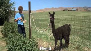 Napoleon Dynamite - Eat the Food! [HQ]