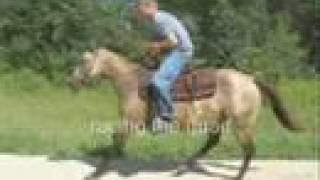 Worst Horse Riding Ever ( I DO NOT OWN THIS MUSIC IN VIDEO.)
