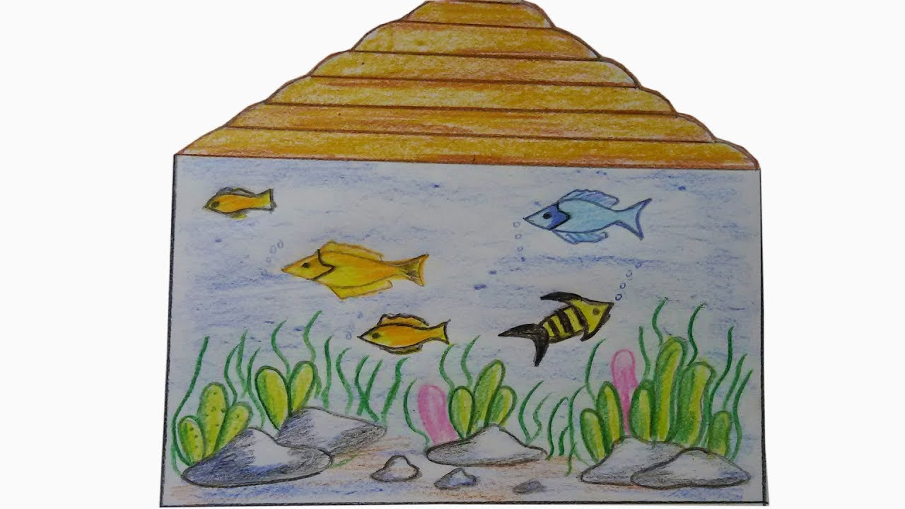 How To Draw Aquarium Learn How To Draw A Fish Tank Youtube