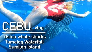 Cebu, Philippines VLOG 1 - Oslob whale sharks, Tumalog Waterfall, Sumilon Island