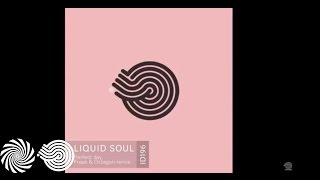 Liquid Soul - Perfect Day (Freak & Octagon Remix)