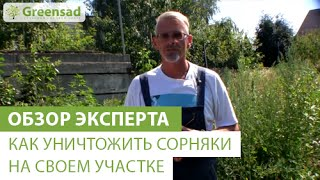 Как уничтожить сорняки  на своем участке(В этом видео наш эксперт расскажет вам о том как уничтожить сорняки на вашем участке. Большой выбор гербици..., 2014-09-03T11:49:21.000Z)
