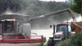 3 Claas 770 Terra-Trac`s Harvesting wheat 2012.wmv