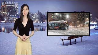 00:09 大雪狂袭温哥华交通冻僵天车月台挤爆02:47 亚马逊也卖假货?加拿...