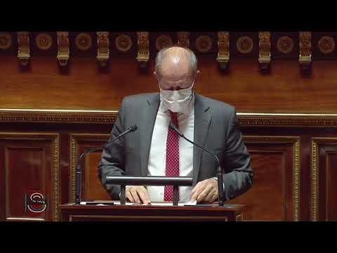 Dany WATTEBLED : PPL Constitutionnelle et Organique pour le plein exercice des libertés locales
