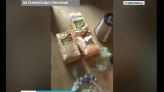 Наркодилеров поймали в Ставрополе