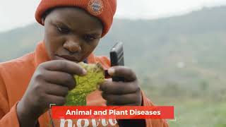 Investing in Africa's youth is investing in Africa's future of food