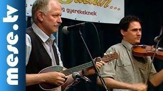 Kolompos együttes: Naptűz villog (koncert részlet) | MESE TV