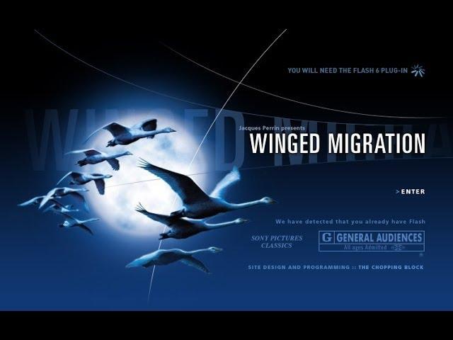 Winged Migration - Le Peuple Migrateur | Official Trailer
