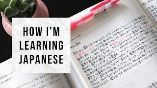 Japanese textbook tour & study tips | 私の日本語の勉強方法