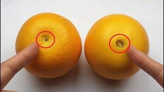 橙子也分公母?橙子甜不甜,看這裏就知道了,保證挑到的橙子又甜又多汁!