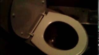 Туалет в поезде. Прикол!!! Смотреть до конца!!!