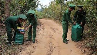 Quảng Trị liên tiếp phát hiện 2 vụ vận chuyển pháo lậu tại khu vực biên giới
