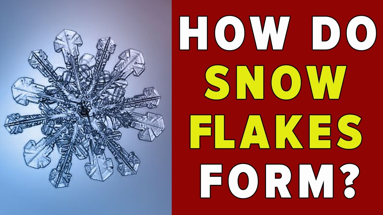 How do Snowflakes Form? - YouTube