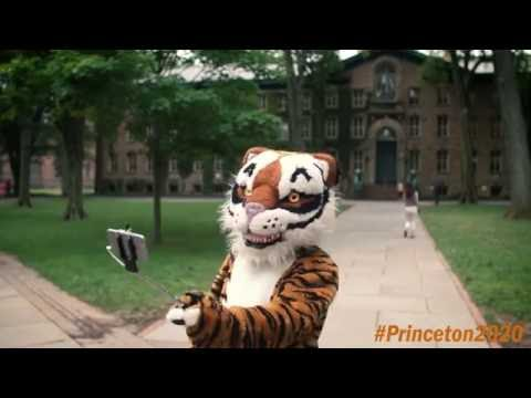 Welcome, Tigers: Your story starts here