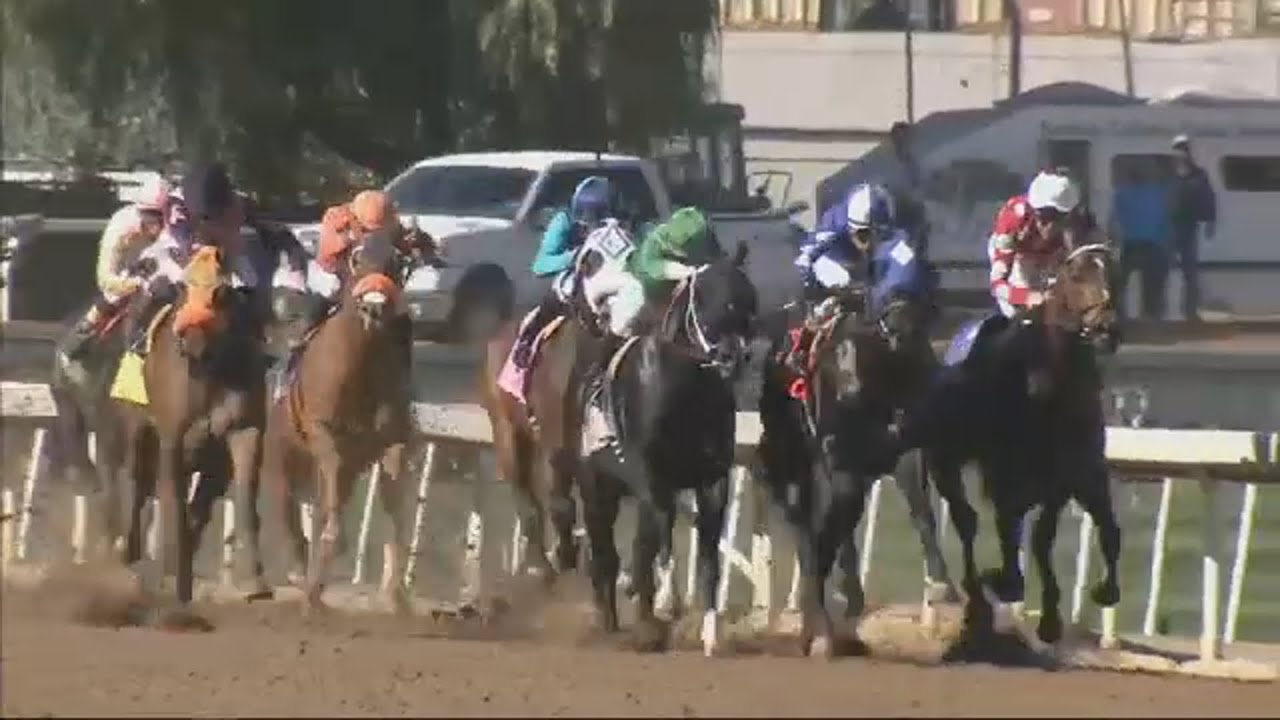 Horse dies at Santa Anita Park on second day of racing season | ABC7