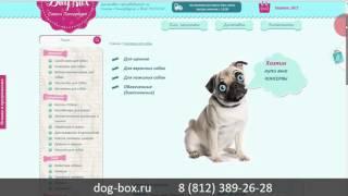 Интернет магазин для собак Dog-box.ru