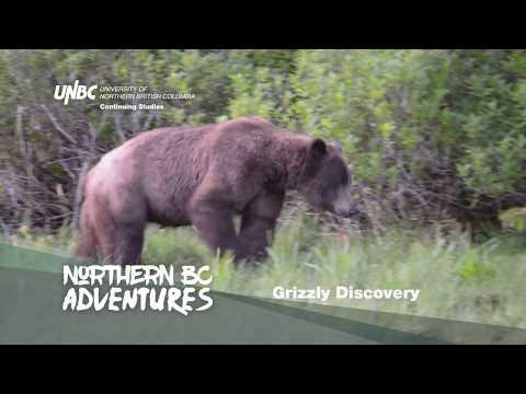 northern-bc-adventures