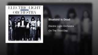 Bluebird Is Dead