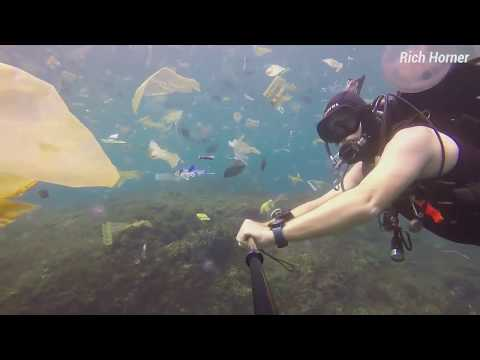 Diver with Garbage Indonesia