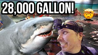 SWIMMING IN A 28,000 GALLON AQUARIUM WITH SHARKS AND STINGRAYS!! | BRIAN BARCZYK