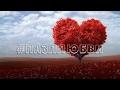 Нюша / Nyusha – «Тебя любить» #пазллюбви