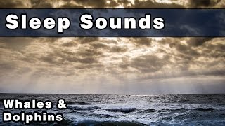 Soothing Sounds To Sleep To: Whale Sounds, Dolphin Sounds, Sounds Of The Ocean, 10 Hours