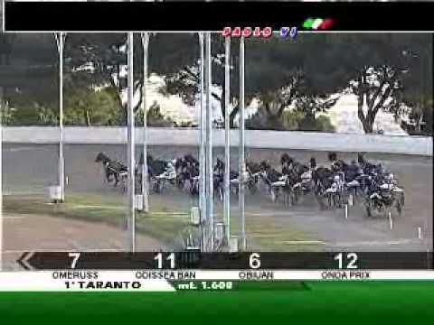 15/12/2011, Taranto , Premio Muller Th