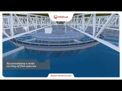 RAS2020 - Revolutionizing Aquaculture