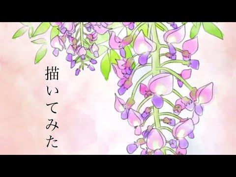 Ibis Paint藤の花の描き方 Youtube
