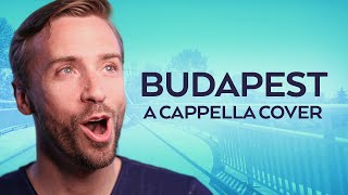 George Ezra - Budapest - Peter Hollens Acappella Cover