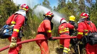 La UME, respuesta del mecanismo Europeo de Protección Civil en Chile