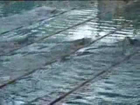 Djam 2009 Bastian 400m Freistil Finale