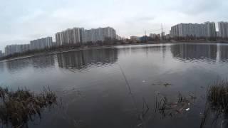 видео Рыбалка на спиннинг в Марьино