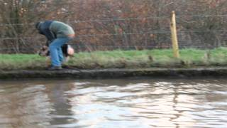 I saw this pig fall into the Shropshire union canal when out for a ...