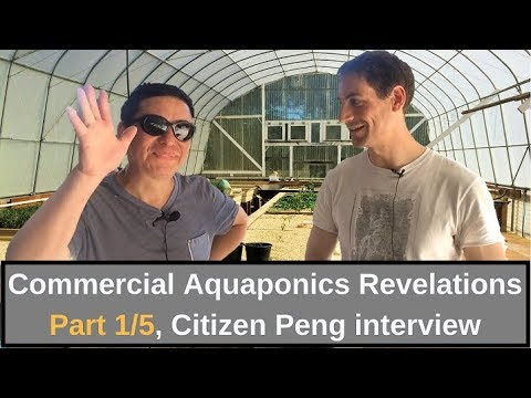 Commercial Aquaponics Revelations Part 1/5, Citizen Peng interview