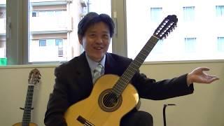 レア 復弦プライムチェンバロギター2重奏