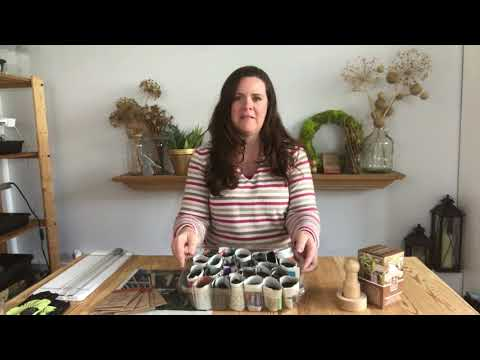 How to Make Newspaper Pots + Superfoods Seed Kit Launch