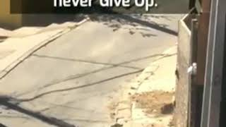 Never Give-Up