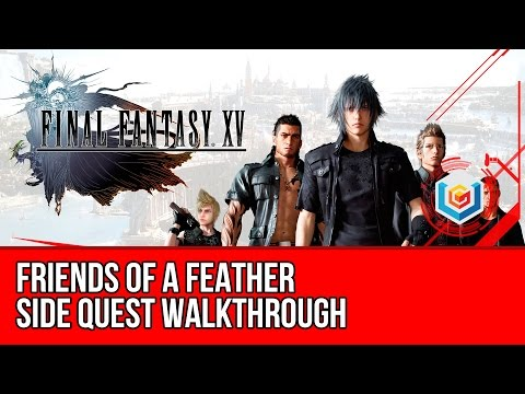 Final Fantasy XV Walkthrough - Friends of a Feather Side Quest Guide/Gameplay/Let's Play
