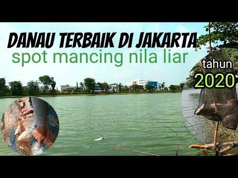Spot Mancing Nila Di Jakarta