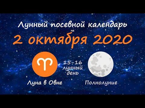 [2 октября 2020] Лунный посевной календарь огородника-садовода | Флористикс Инфо