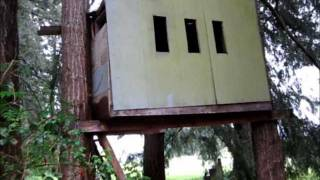 Cool Airsoft Treefort