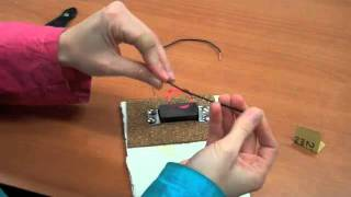 Electric Motor: a fun, at-home science experiment