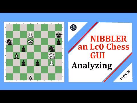 Nibbler: an Lc0 chess GUI - Analyzing Games