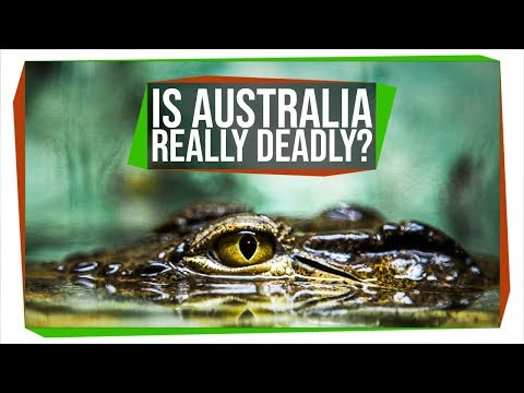 Is Australia Trying to Kill You?