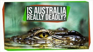 is-australia-trying-to-kill-you