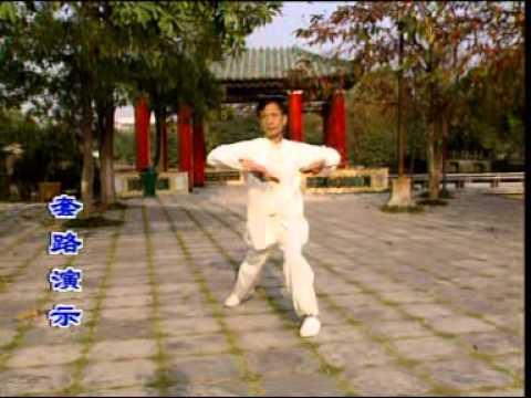 Pan Nam Wing Chun Kuen (Peng Nan Yongchunquan), Fu Mei Seung Do (Tiger Tail Double Knives)-2