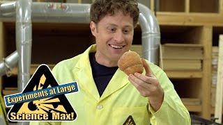 Science Max | Bread Experiment | Season 1 Full Episode | Kids Science