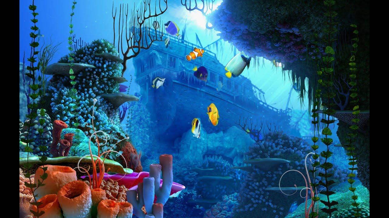 Interactive 3d Aquarium Live Wallpaper Como Hacer Un Papel De Adorno Para Tu Acuario Youtube
